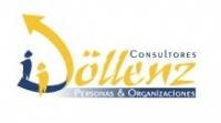 Dollenz Consultores