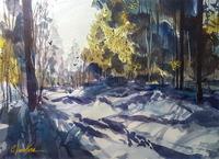 Winter Shadows