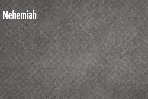 Nehemiah  banner