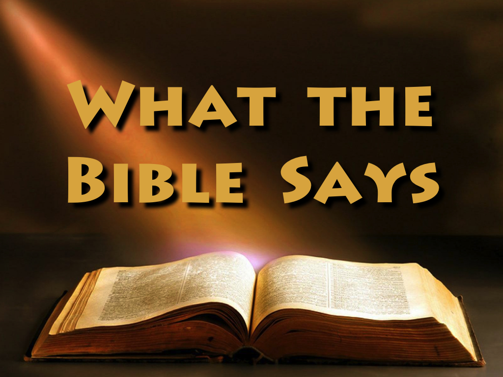 The Bible And Money What It Says…..