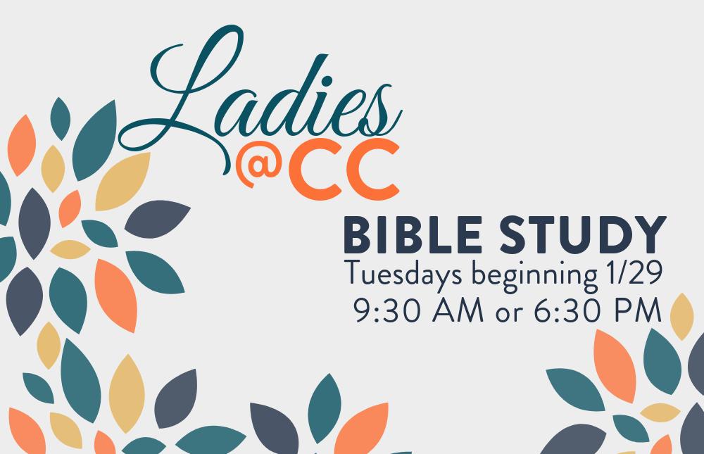 eNews and Web - Ladies Bible Study - 1000x645 (4)