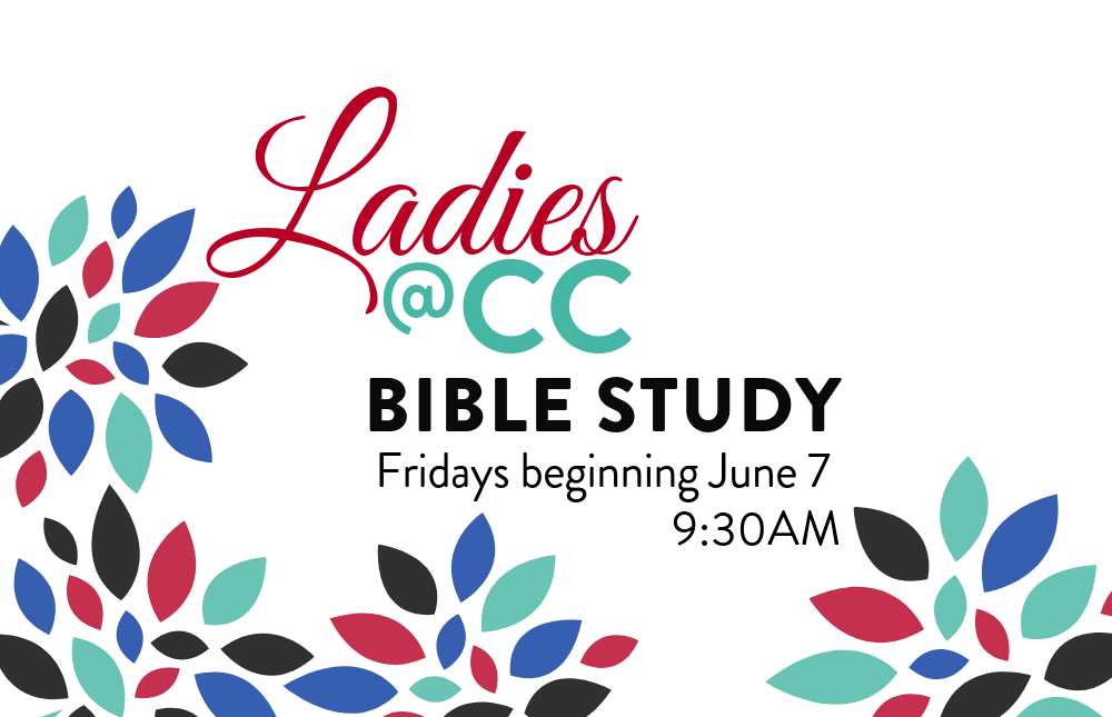 eNews & web - Ladies Bible Study Summer2019 - 1024x768 image