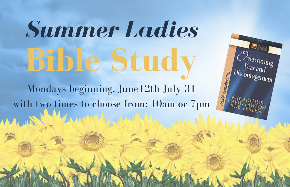 Website- Summer Ladies Bible Study image