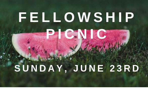 586x352 picnic image