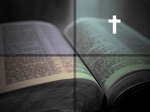 Gospels survey