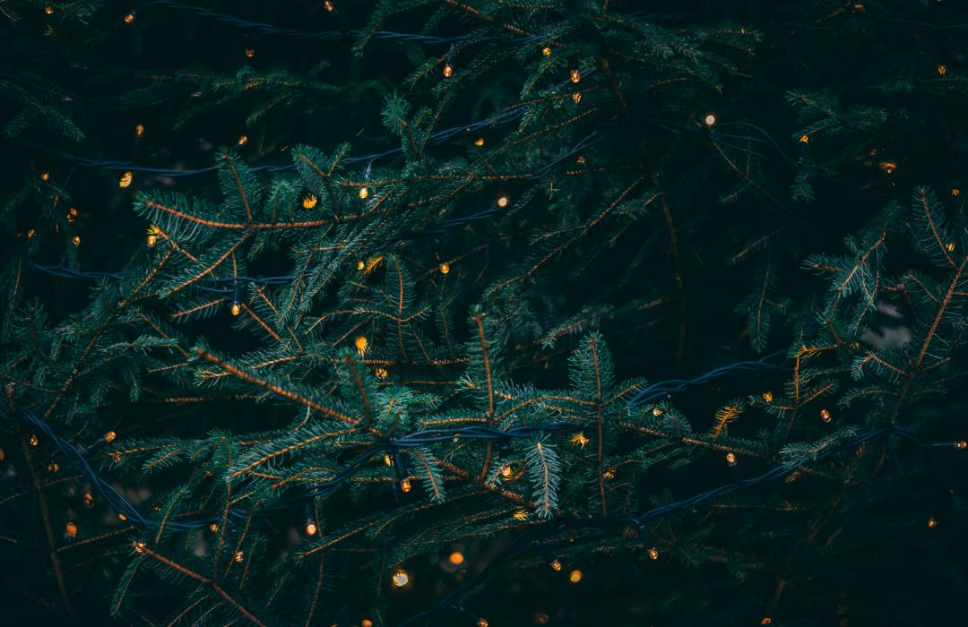 damascus event christmas2 image