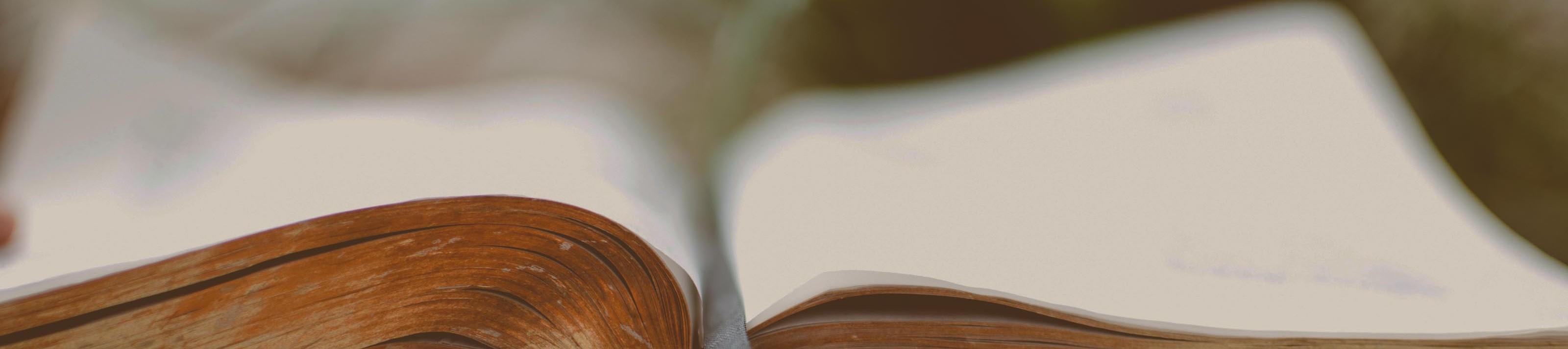 bible headerthin