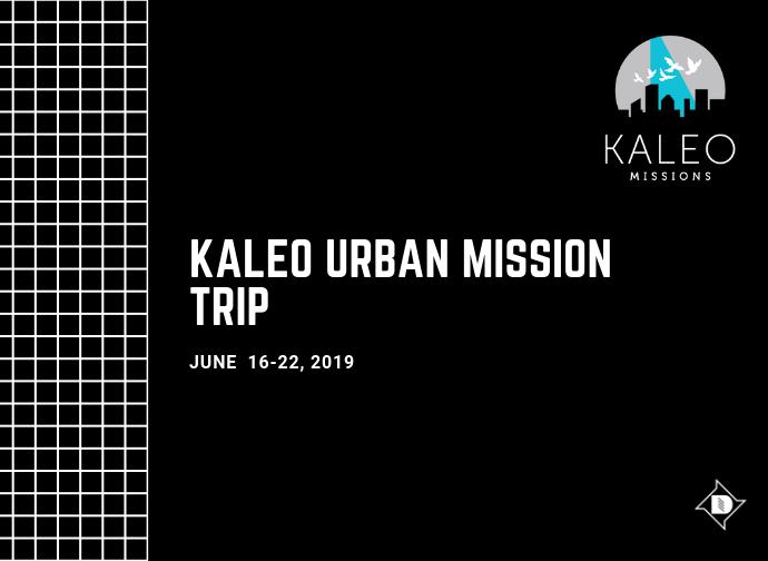 Kaleo image