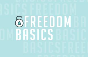 Freedom-Web image