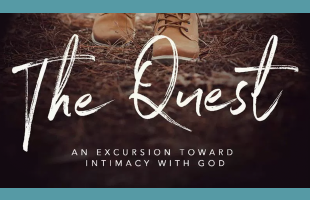 The Quest-Web Event  image