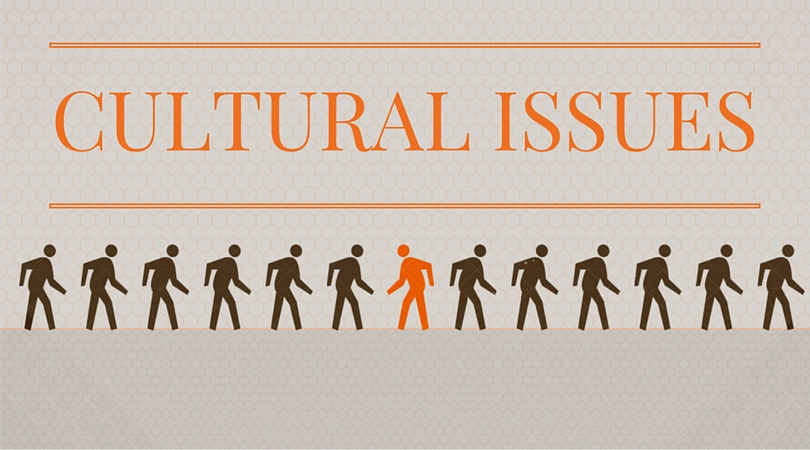 Cultural Issues Series