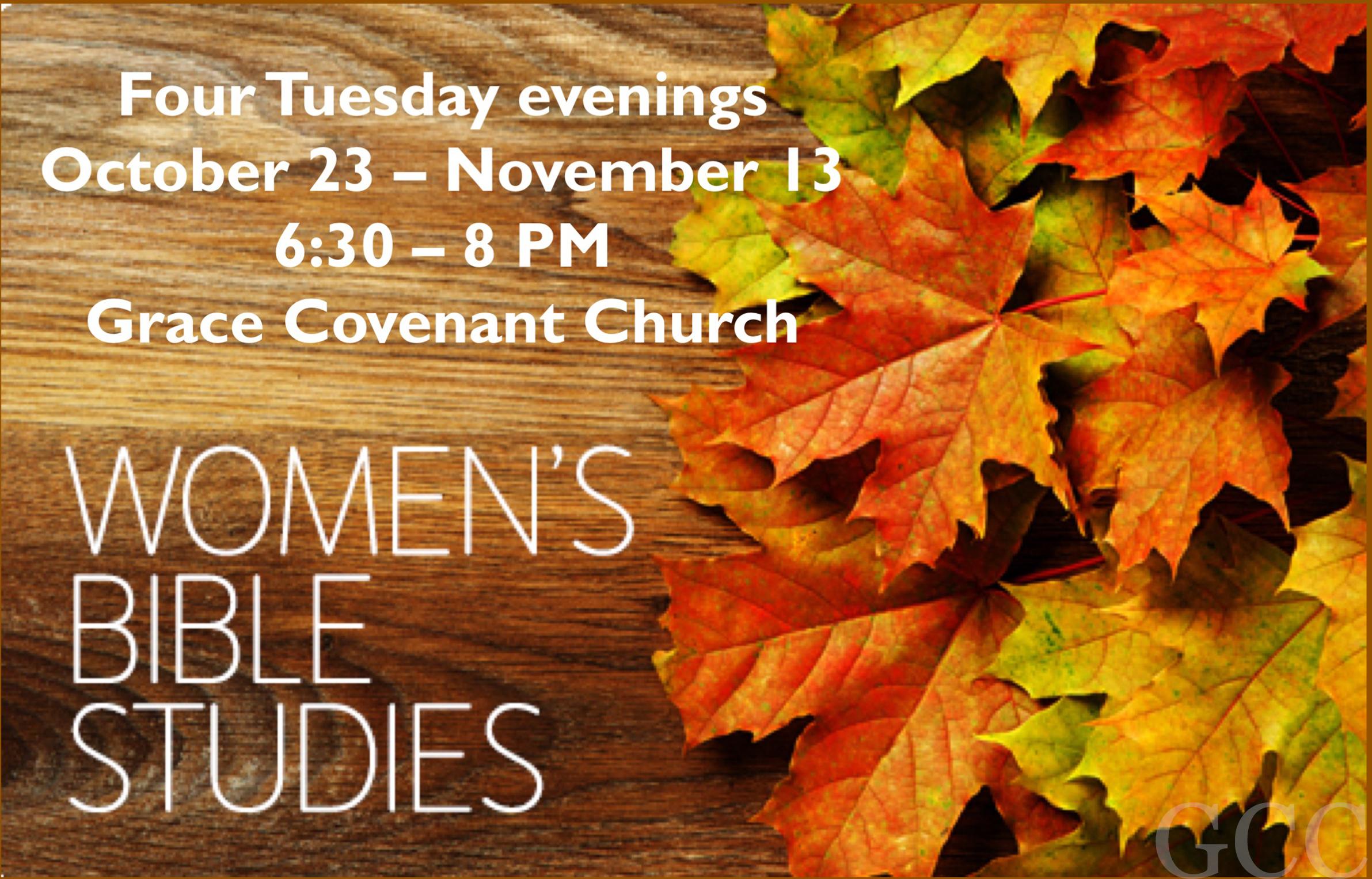 Women's Bible study copy image