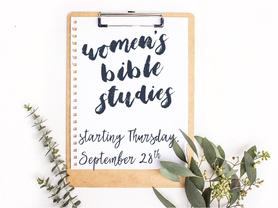 Womens bible studies image