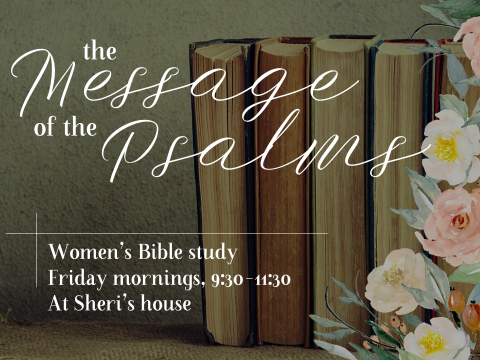 Womens Bible study Psalms image