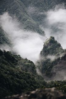 Jungle Mtn