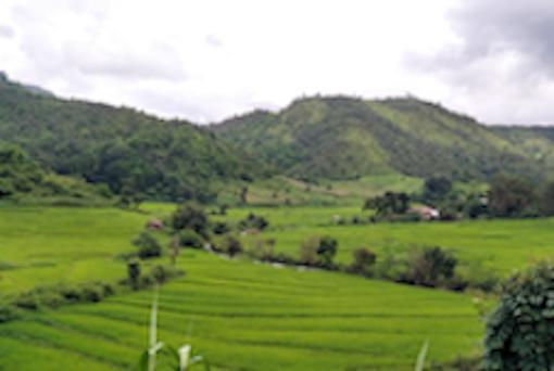 Myanmar_Stock_3