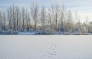 Siberia_10