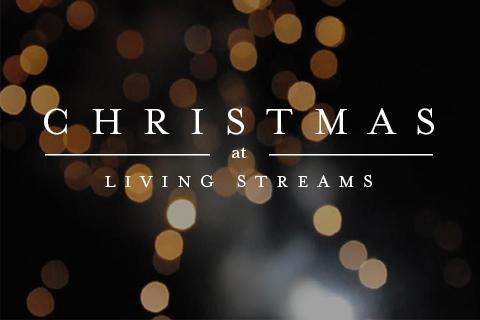Christmas18-wh image