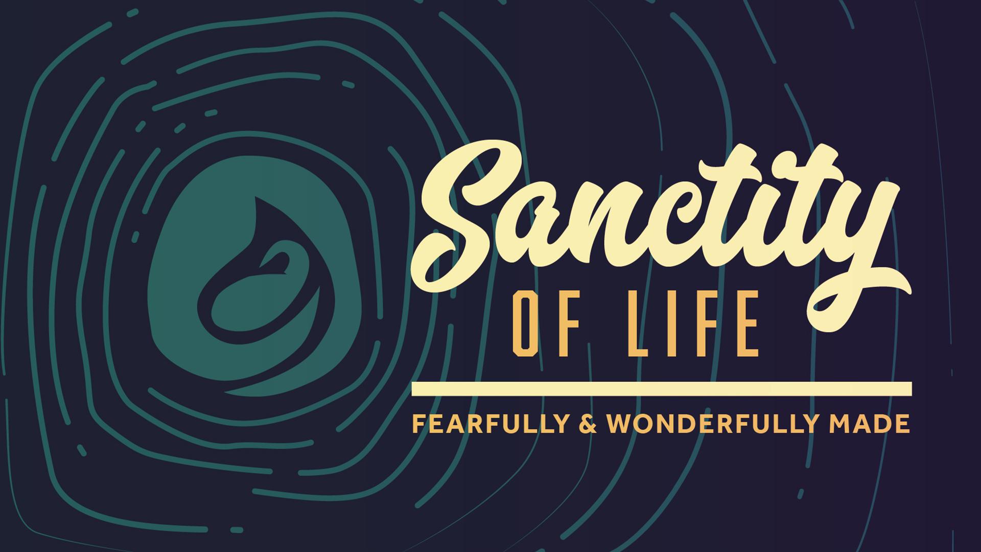 46209_Sanctity_of_Life
