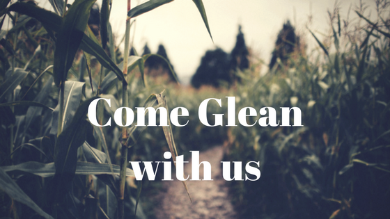 Come Glean with us image