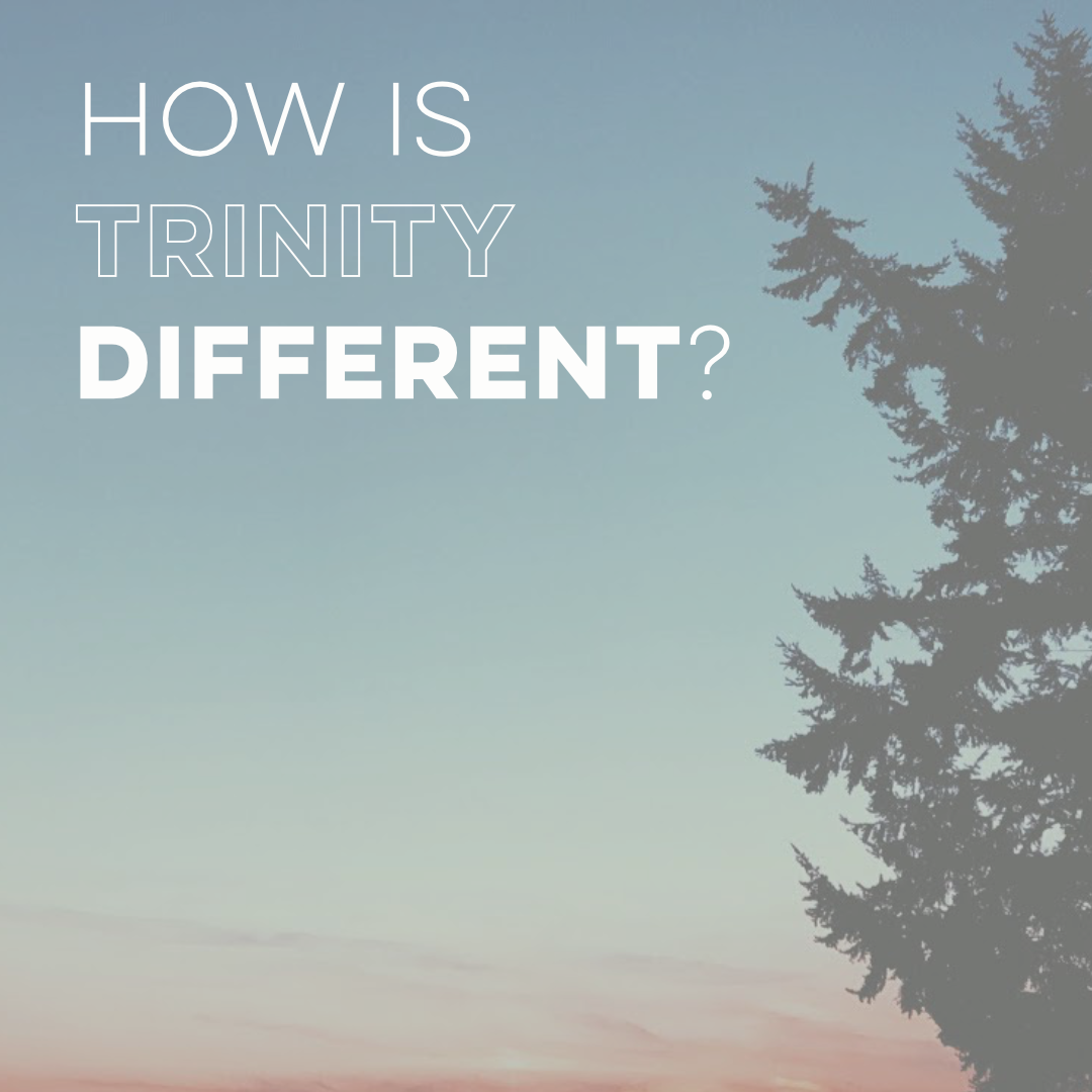 Social Media - 2.16.18 - How is Trinity Different?