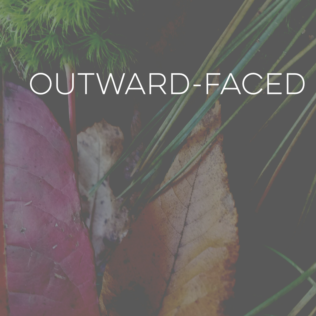 Social Media - Outward-Faced