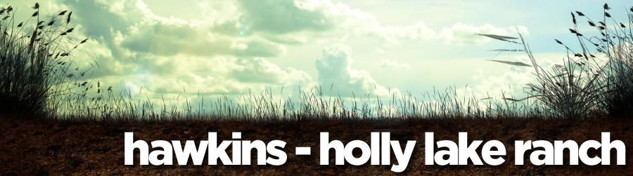 hawkins - holly lake ranch banner