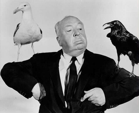 alfred hitchcock los pájaros