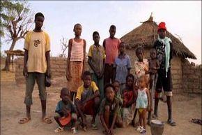 Thumb_2407_terres_echanges_afrique3