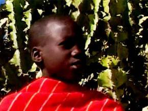 Thumb_ma_vie_sur_la_ferme_ebule_kenya
