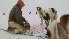Cropped_thumb_959_terres_arctiques_rangers