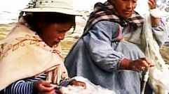 Cropped_thumb_ma_vie_sur_la_ferme_jheny_bolivia