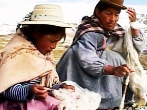 Thumb_ma_vie_sur_la_ferme_jheny_bolivia