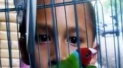 Cropped_thumb_bienvenue_dans_mon_pays1_indonesie