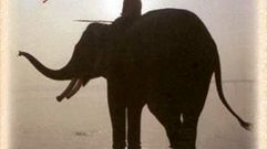Cropped_thumb_107_hathi