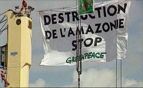 Thumb_2511_greenpeace