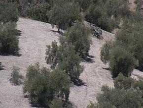 Thumb_desertification_andalousie