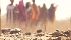Cropped_thumb_desertification_niger