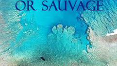 Cropped_thumb_or_sauvage_serie