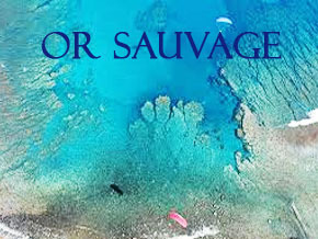 Thumb_or_sauvage_serie