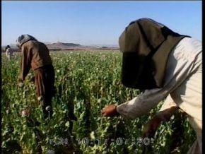 Thumb_1589_afghanistan_route_de_heroine