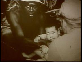 Thumb_1253_poussieres_empire_okinawa