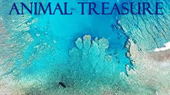 Cropped_thumb_or_sauvage_ang_animal_treasure_serie