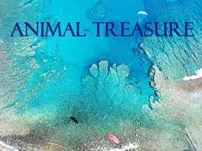 Thumb_or_sauvage_ang_animal_treasure_serie