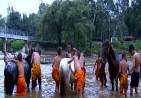Thumb_941_monk_on_horseback2