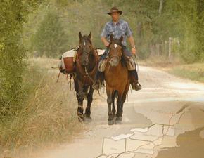 Thumb_legende_du_cheval_canadien