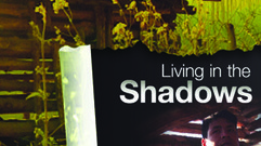 Cropped_thumb_living_in_the_shadows