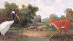 Cropped_thumb_acs_fox_and_crane