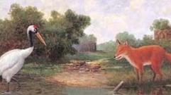 Cropped_thumb_acs_fox_and_crane