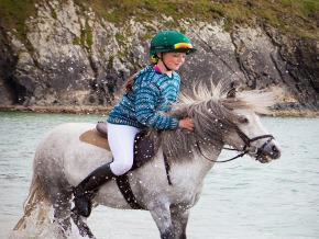 Thumb_geolino_hannah_et_les_poneys_shetland